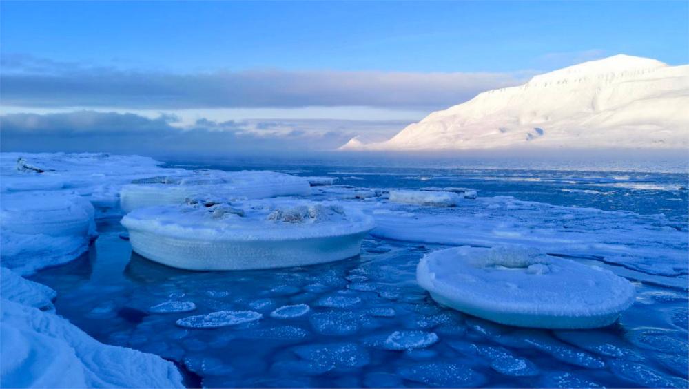 Das wunderbare Pancake-Eis im Hafen Longyearbyens