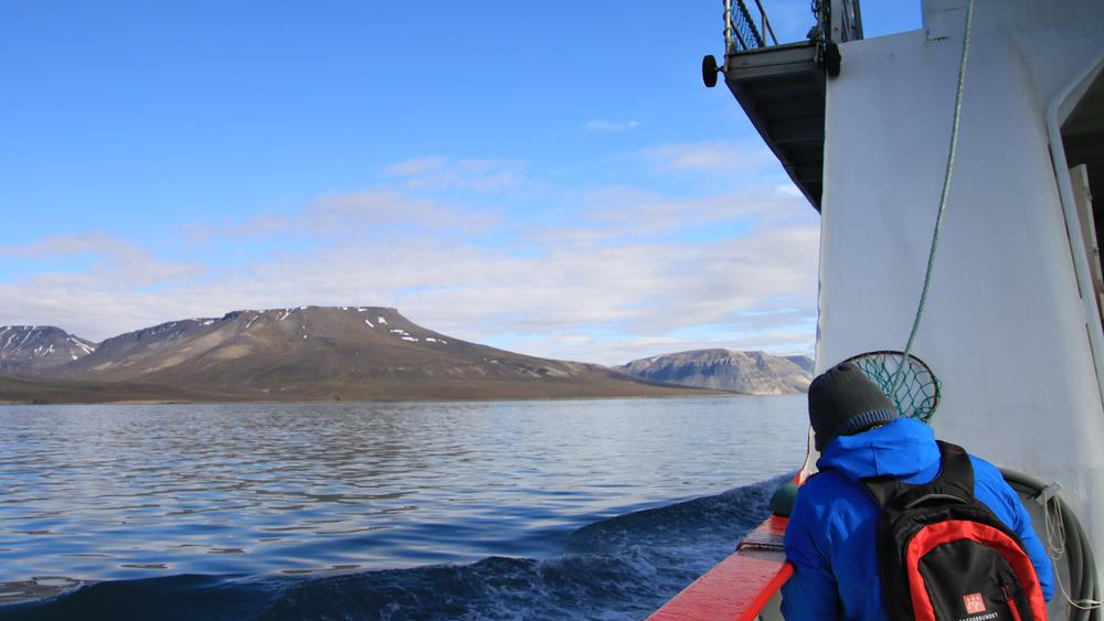 Ship tour in Isfjord on Svalbard