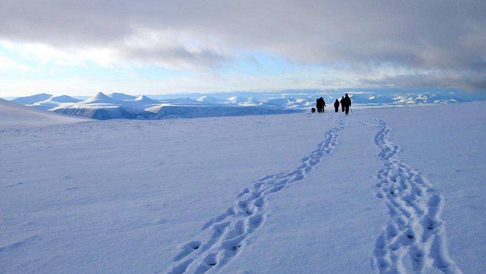 Snowshoe hiking arround Longyearbyen