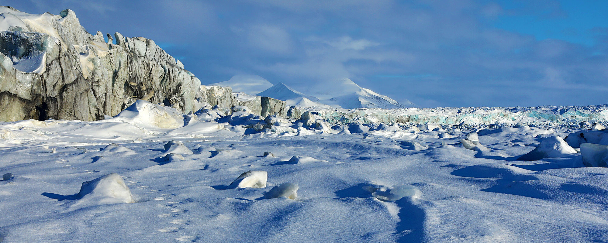 Eisbärenspuren