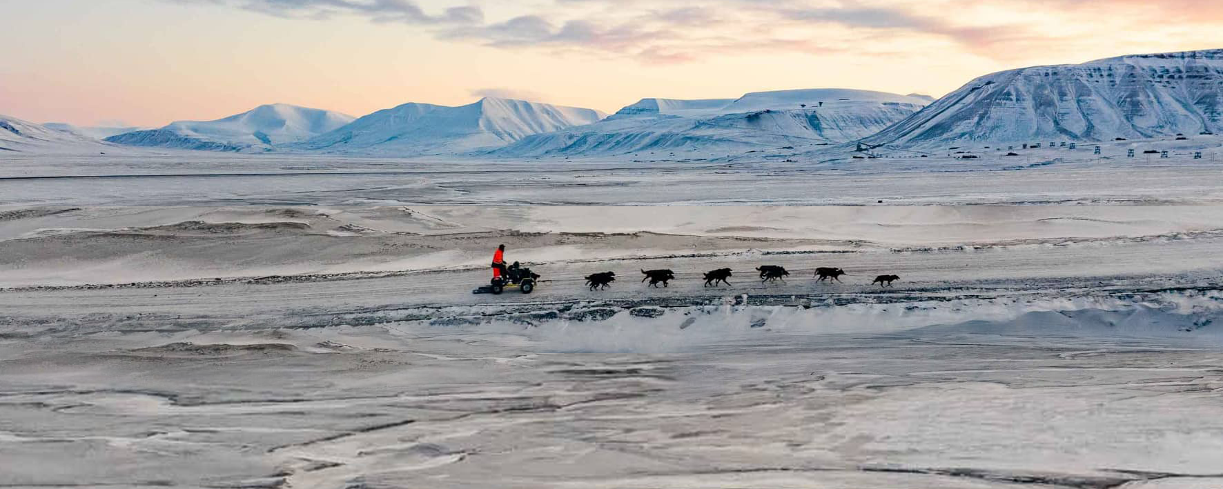 Mit den Schlittenhunden auf Räder unterwegs