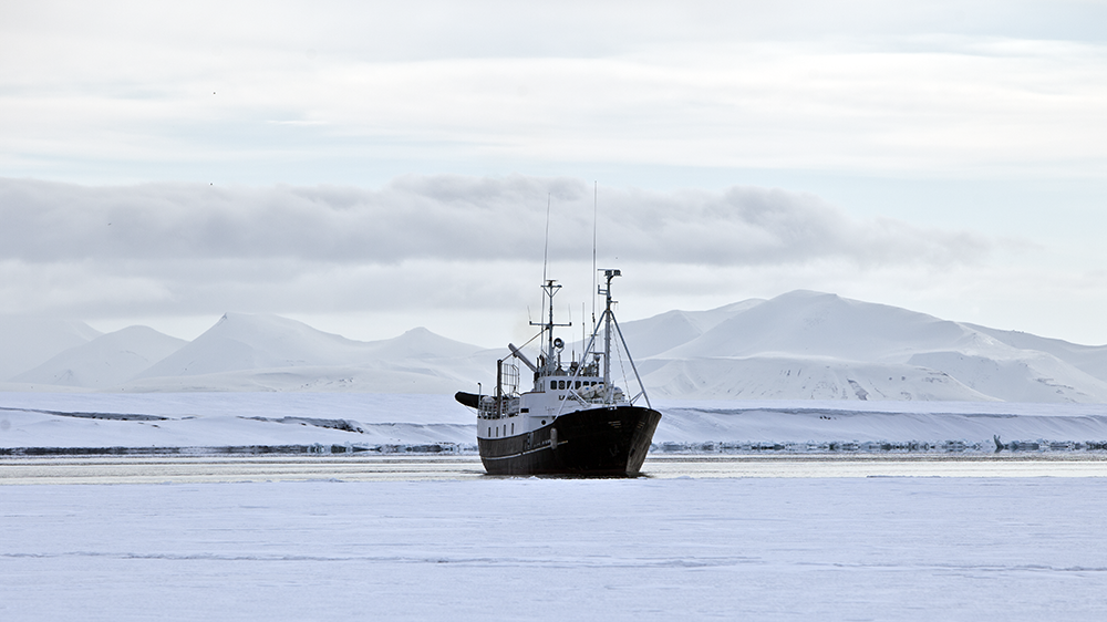 Langøysund an der Eiskante