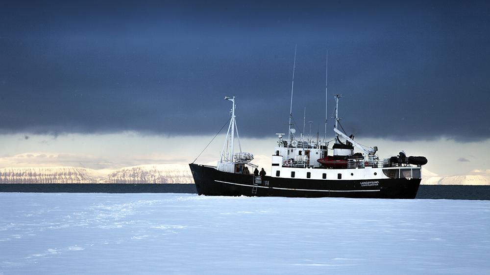 MS Langøysund
