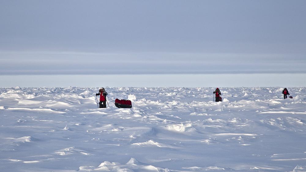 Nordpol mit den Skiern