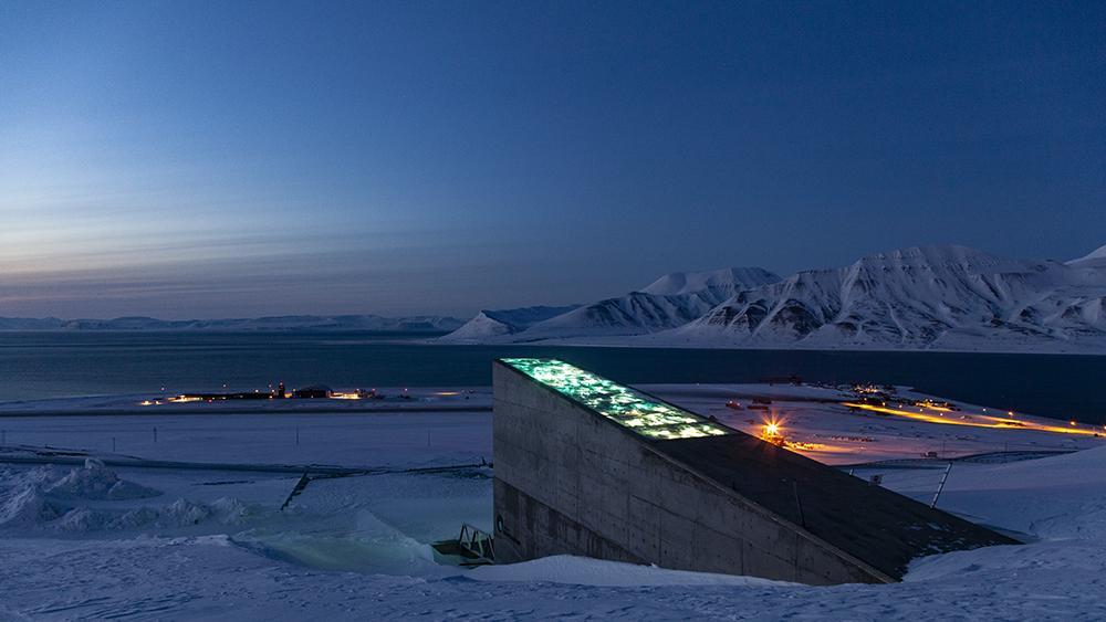 Samenlager Spitzbergen