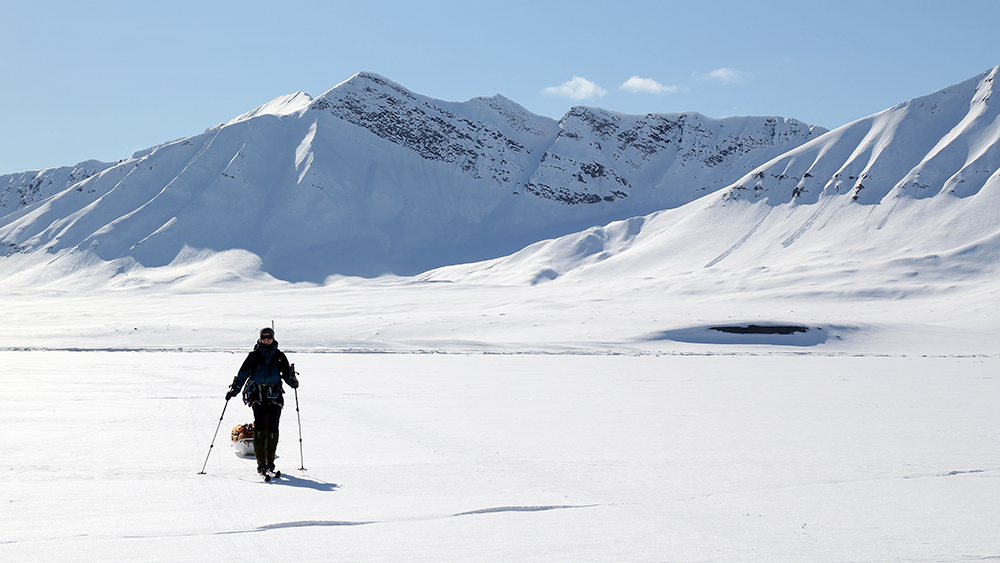 Skitrip over the Sea ice